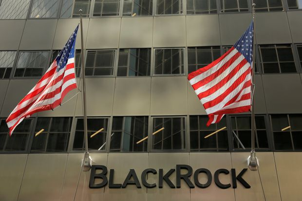 BlackRock to Remain Firm on Climate Priorities Despite Coronavirus Pandemic
