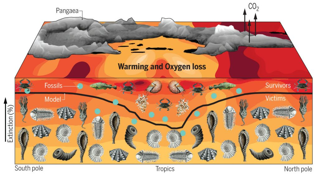 New Research Suggests Climate Change Can Cause Mass Extinction of Species Worldwide